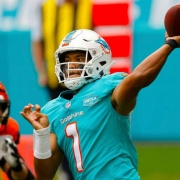 Dolphins win Bengals