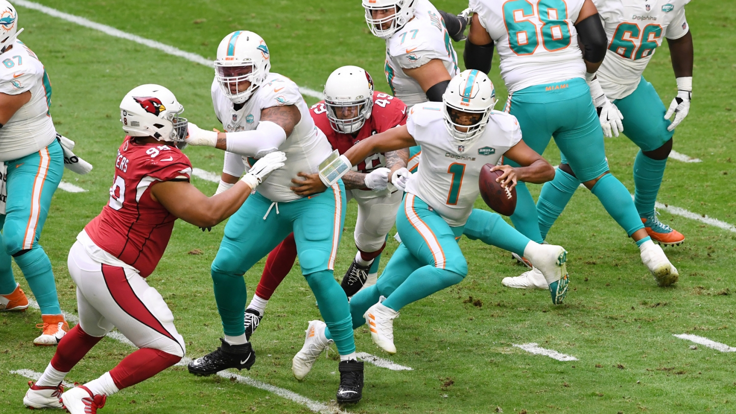 Dolphins Win Cardinals