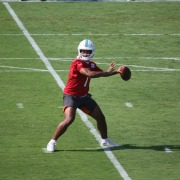 Dolphins training camp