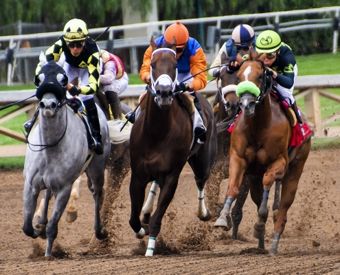 Betting on Horse Racing: Updates on the Pegasus World Cup