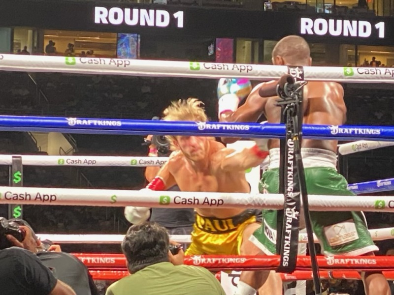 Logan Paul Goes the Distance with Floyd Mayweather